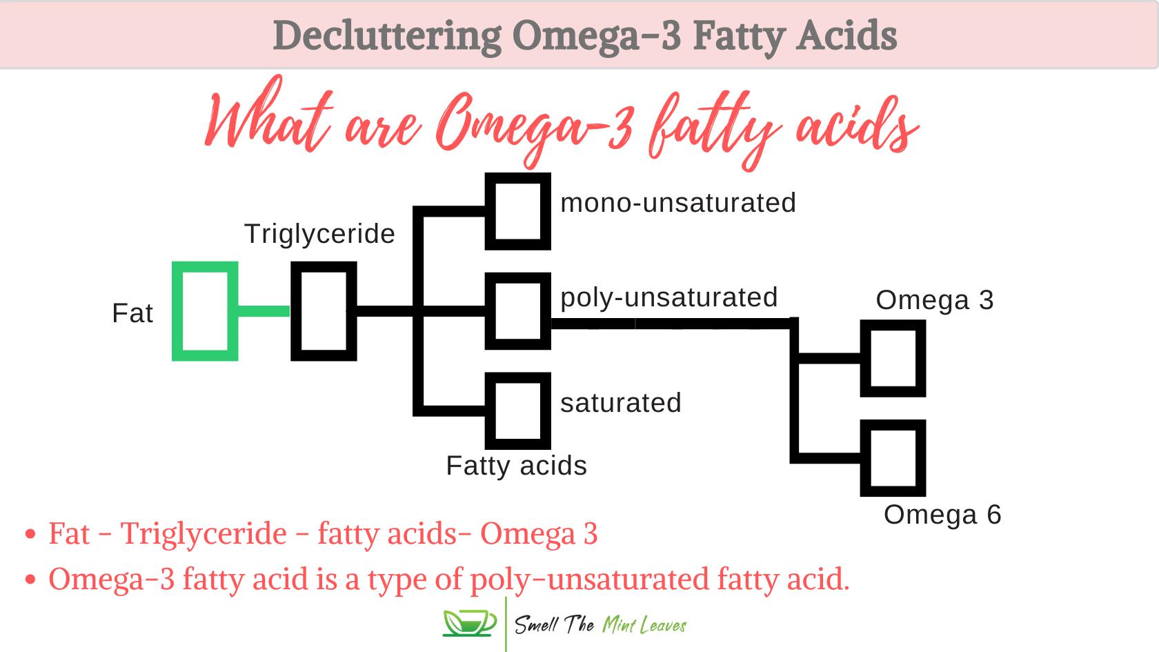Omega-3 fatty acids explained